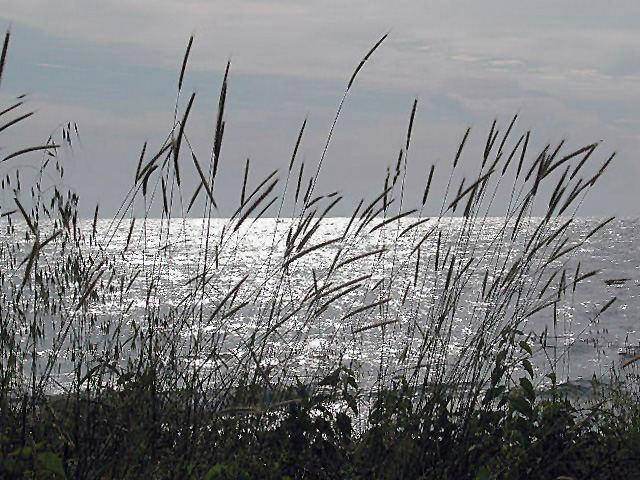 Meeresromantik