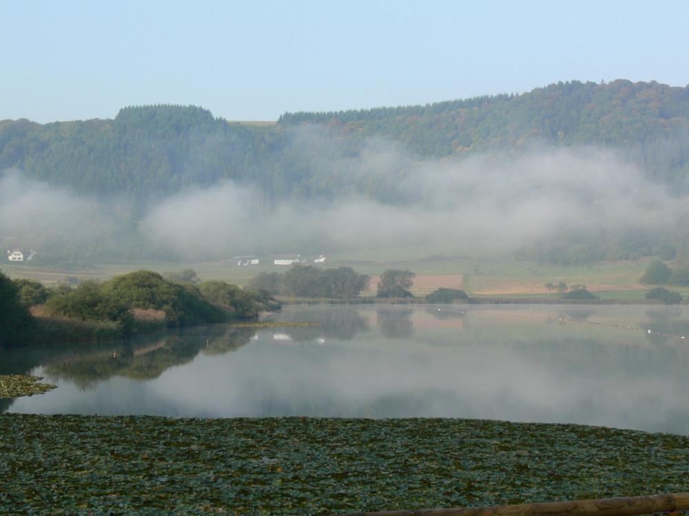 Meerfelder Maar am Morgen