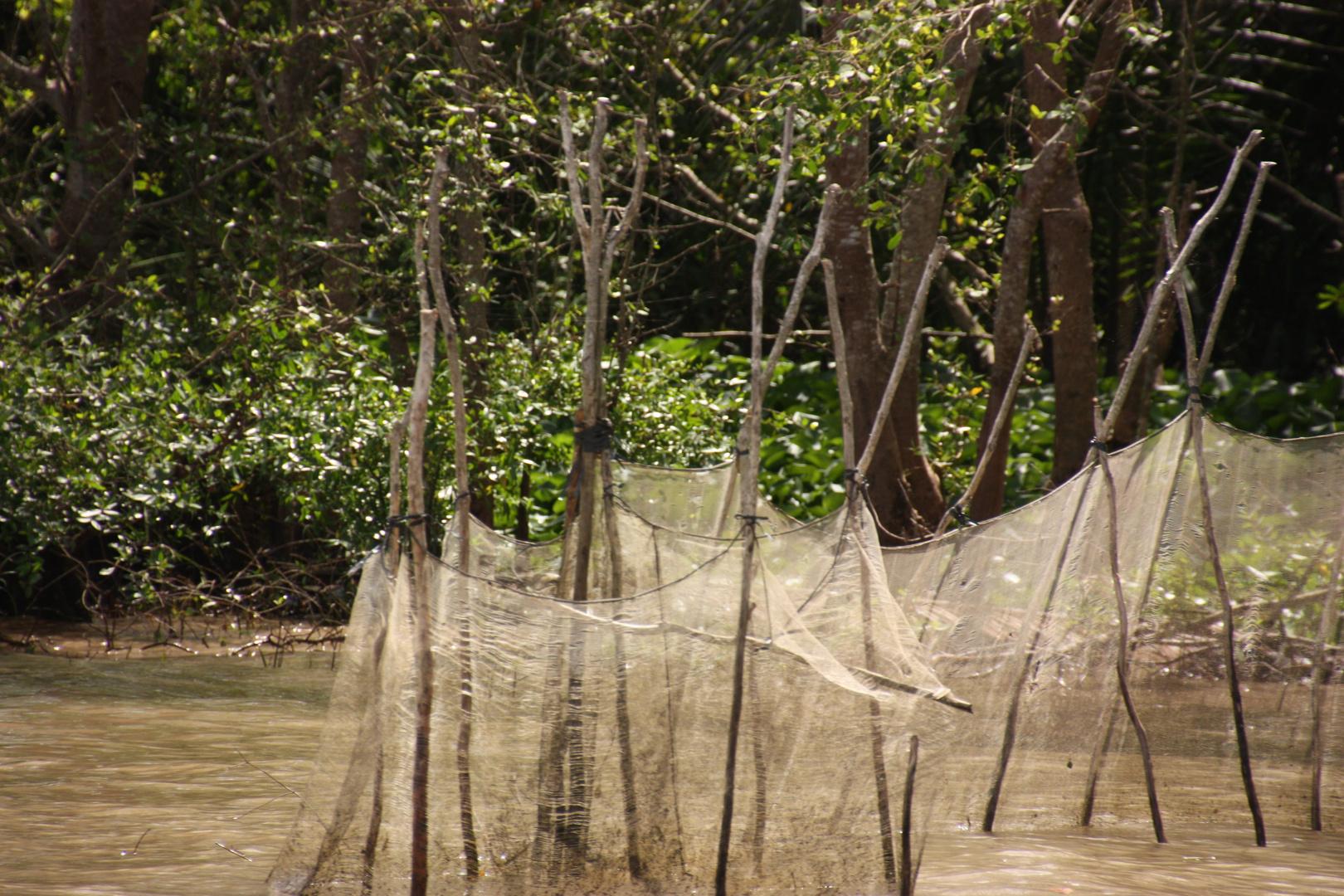 Megong Delta - Fischernetze