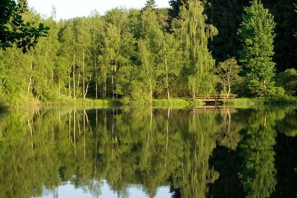 Mehlbacher Teich
