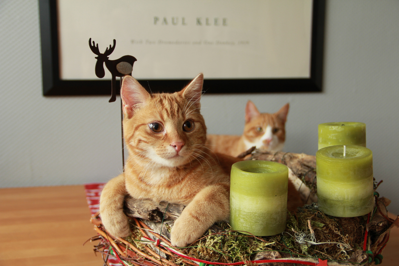 mein adventskranz foto bild karten und kalender weihnachtskarten advent bilder auf. Black Bedroom Furniture Sets. Home Design Ideas