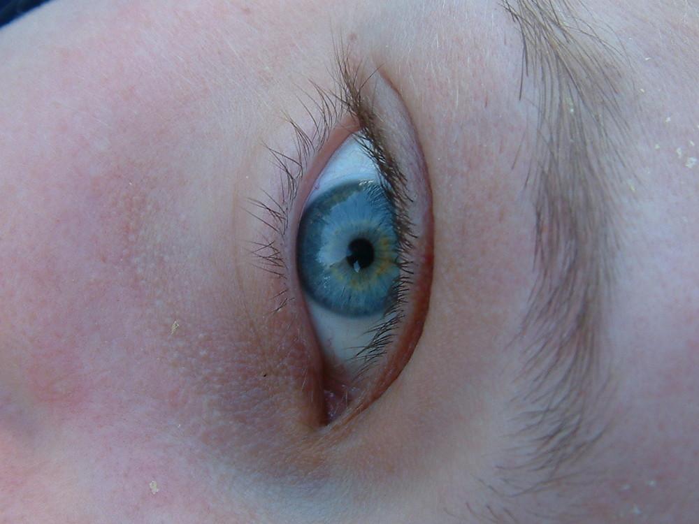mein Auge makro