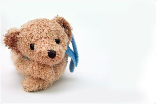 Mein Bär