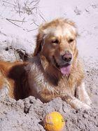mein Ball,meine Strand,meine Düne