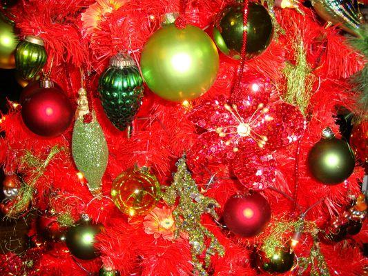 mein Baum ist dieses Jahr ROT!