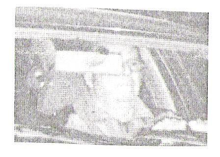 Mein Bild aus dem Verbrecheralbum