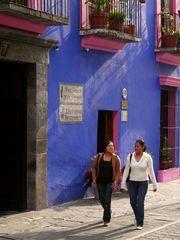 Mein buntes Mexiko 15