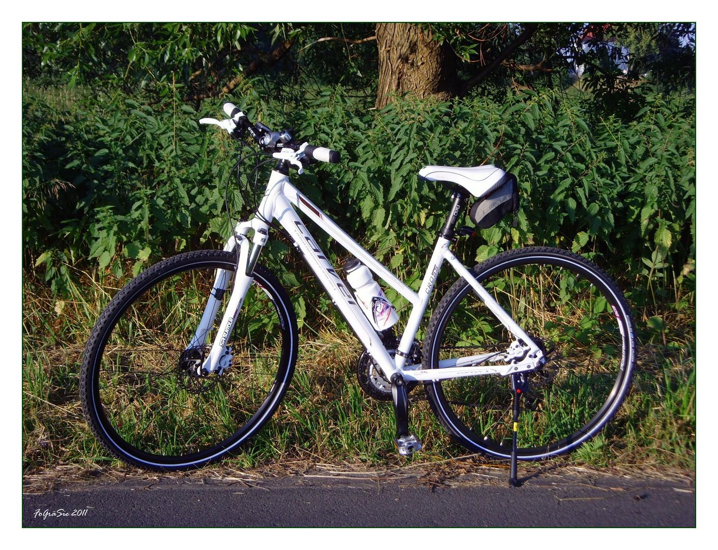 * Mein Cross-Bike *