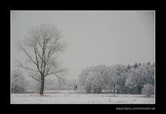 Mein Dorf im Winter