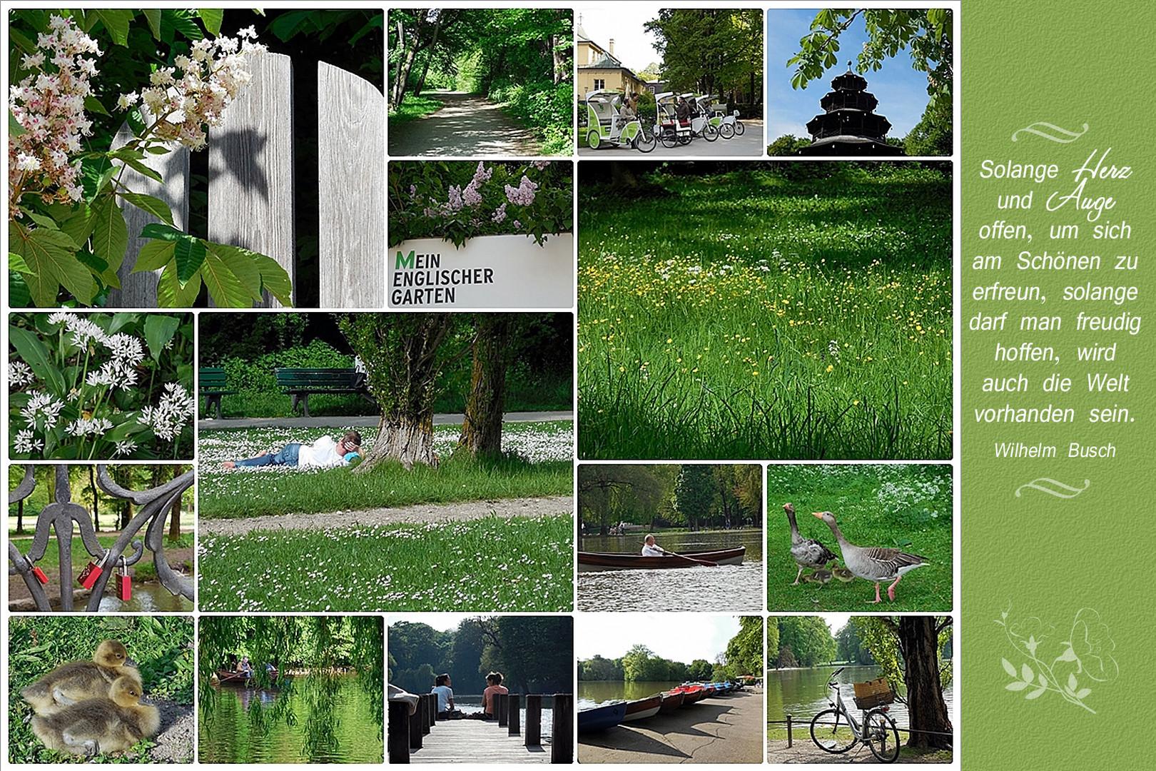 Mein Englischer Garten ...