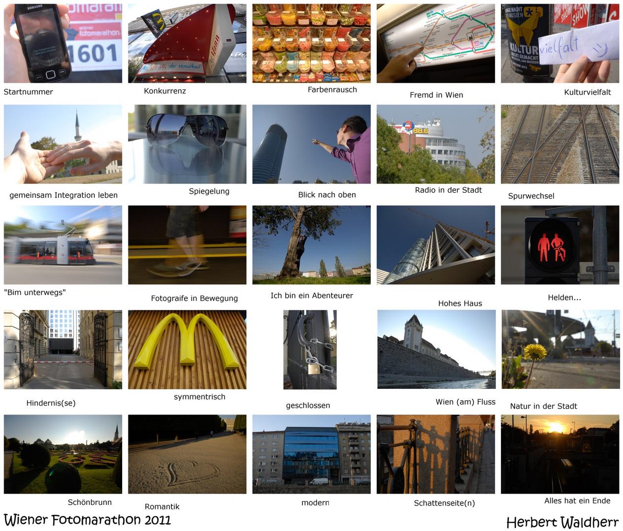 mein erster Fotomarathon - Platz 48