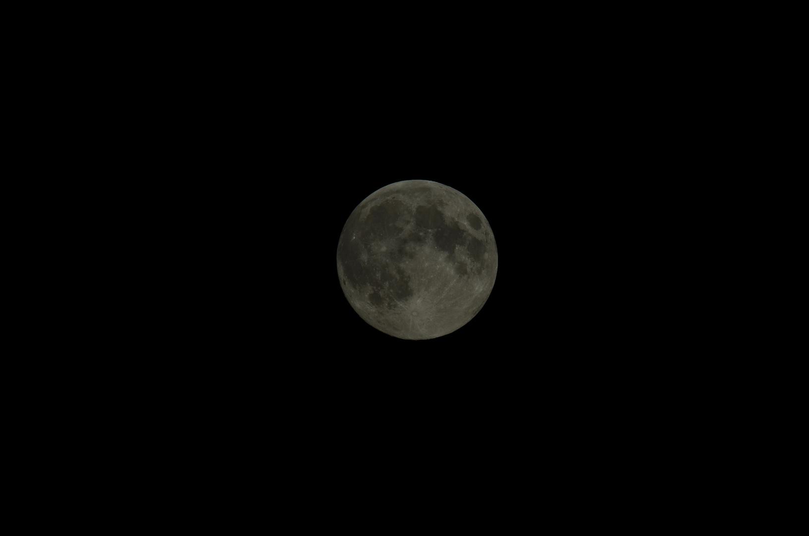 Mein erster Mond