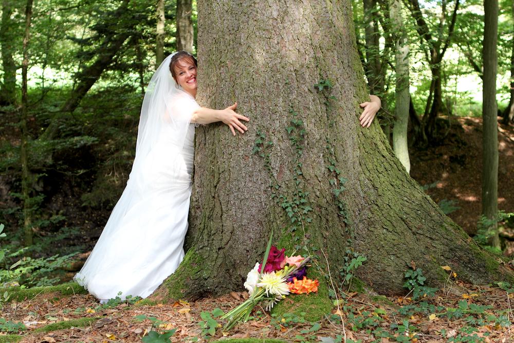 Mein Freund der Baum . . .