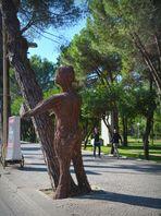 Mein Freund der Baum in Schieflage