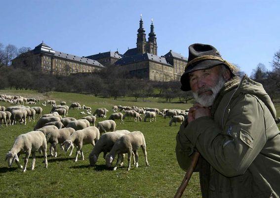 Mein Freund der Hans mit seiner Herde