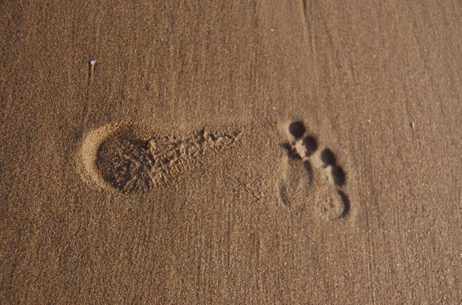 Mein Fuß