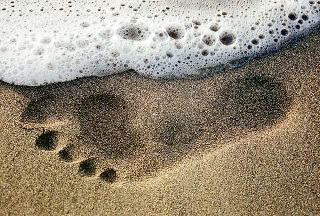 Mein Fuß Version 2