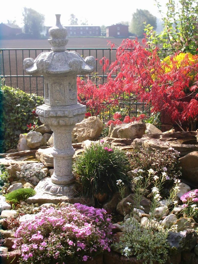 Mein Garten 2009