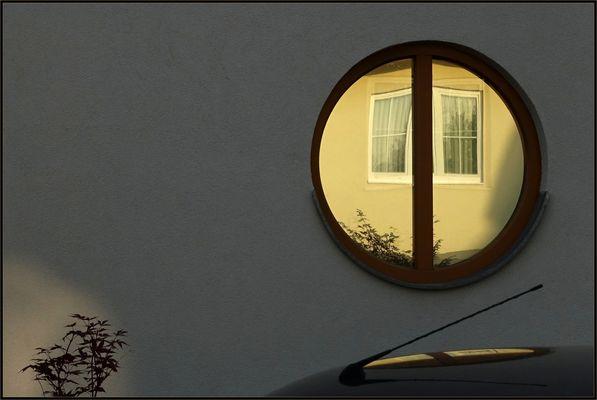 Mein Haus, mein Auto, mein Baum.