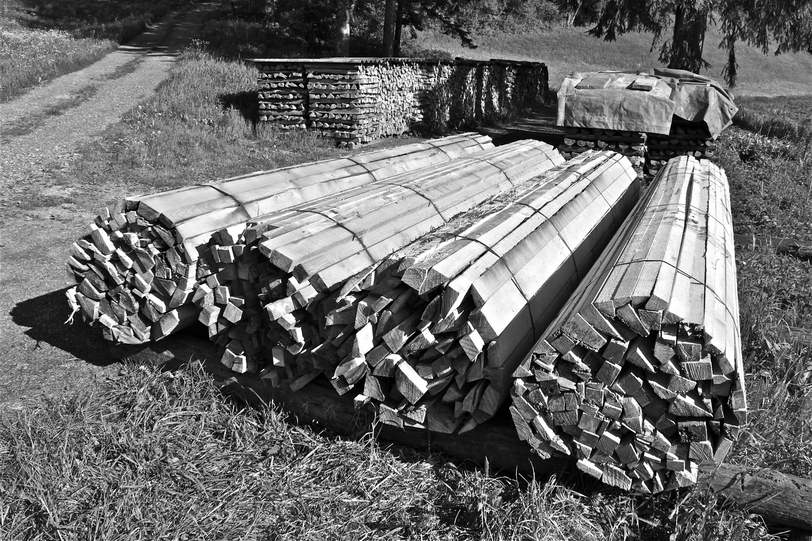 Mein Holz für den Winter ist da!