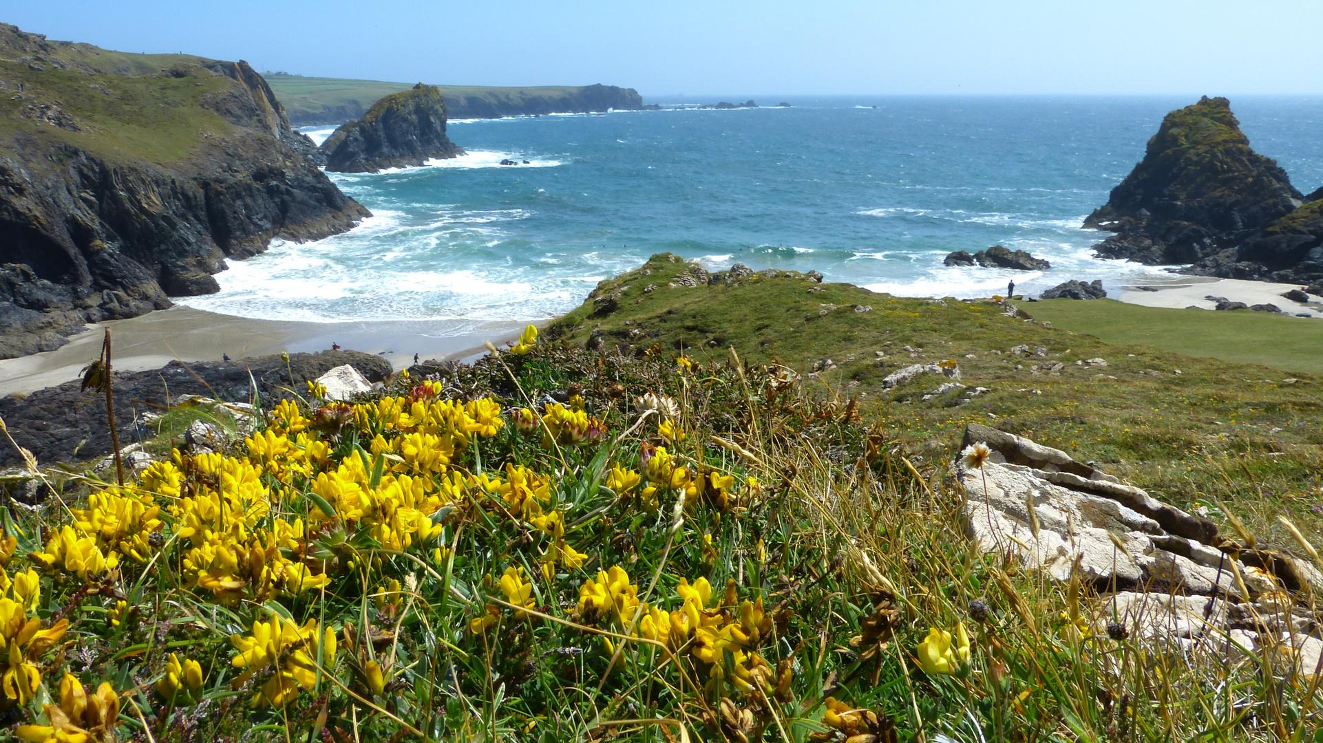 Mein Inbegriff von Cornwall...