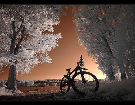 Mein IRres Fahrrad