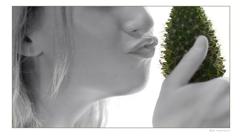 ... mein kleiner grüner Kaktus .. nr. 1