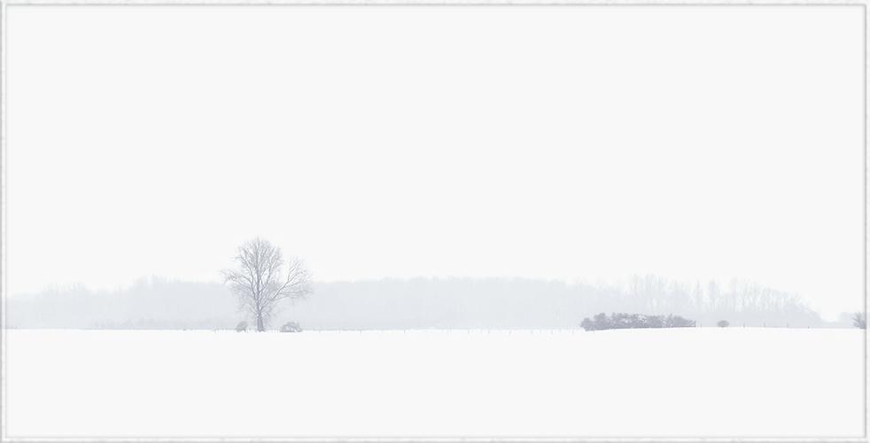 mein letztes schneebild ...