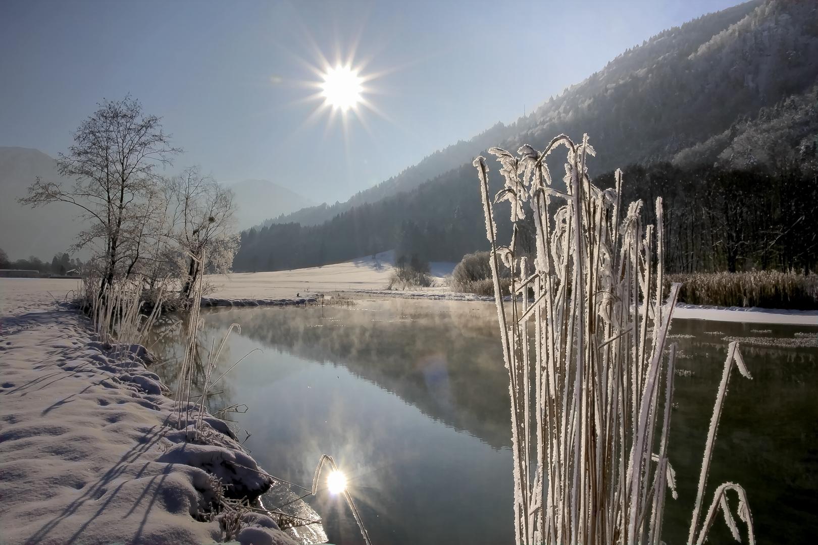 Mein letztes Winterfoto...