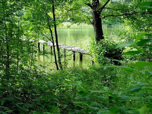 Mein Lieblings-See in der Mark Brandenburg