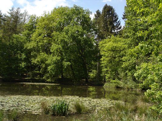 Mein Lieblingsplatz in Buxtehude