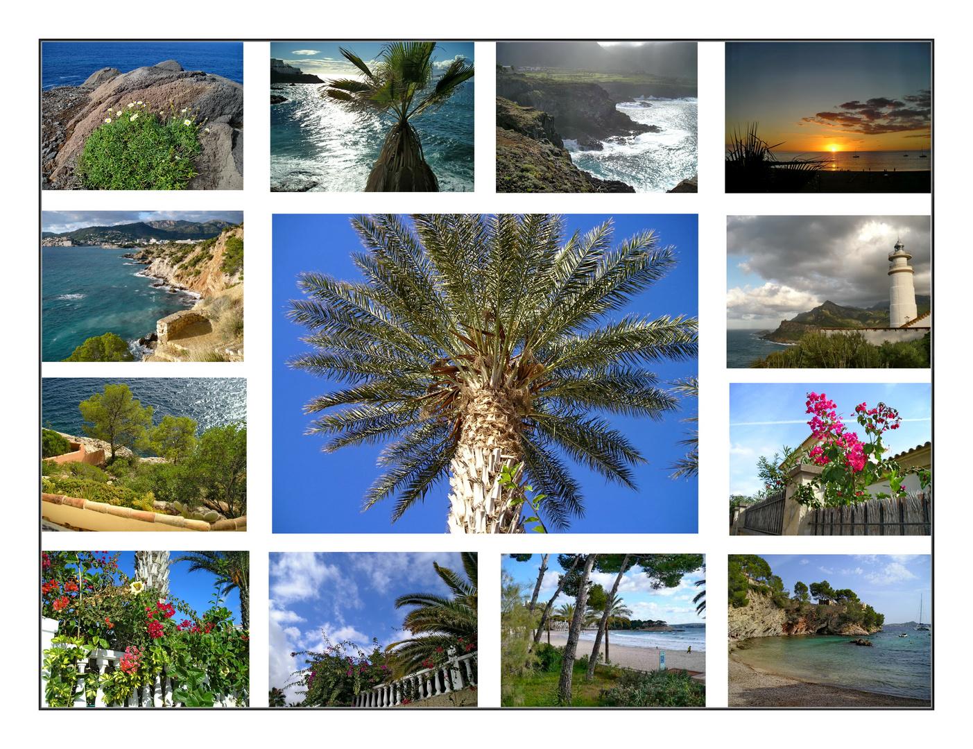 - Mein Mallorca -