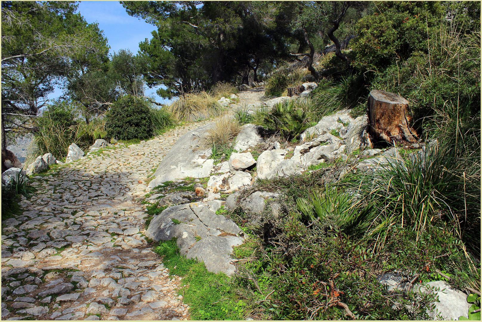Mein Mallorca- Aufstieg auf den Puig de Maria bei Pollensa
