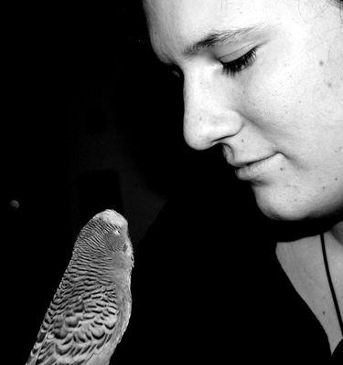 Mein neuer Freund Morty