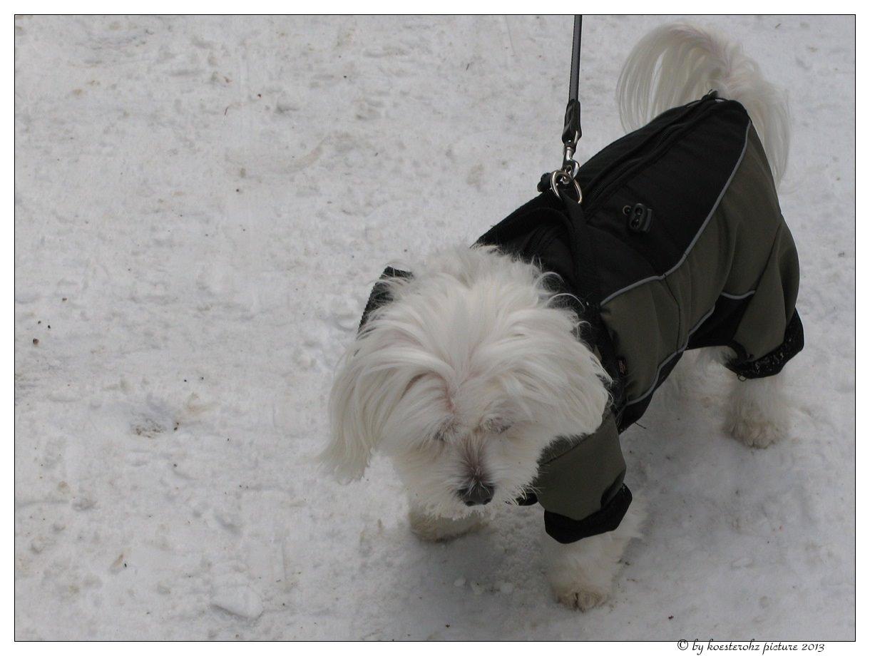 Mein neuer Schneeanzug