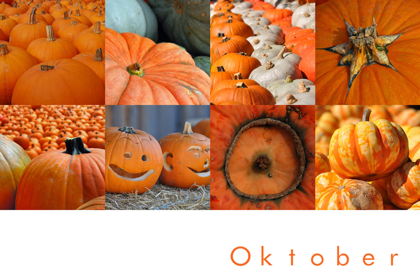 Mein Oktober ist orange