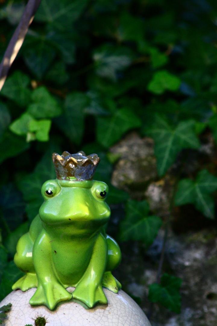 Mein persönlicher Froschkönig