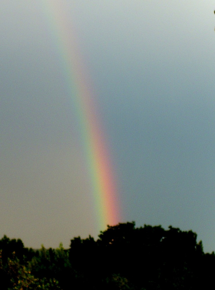 Mein Regenbogen