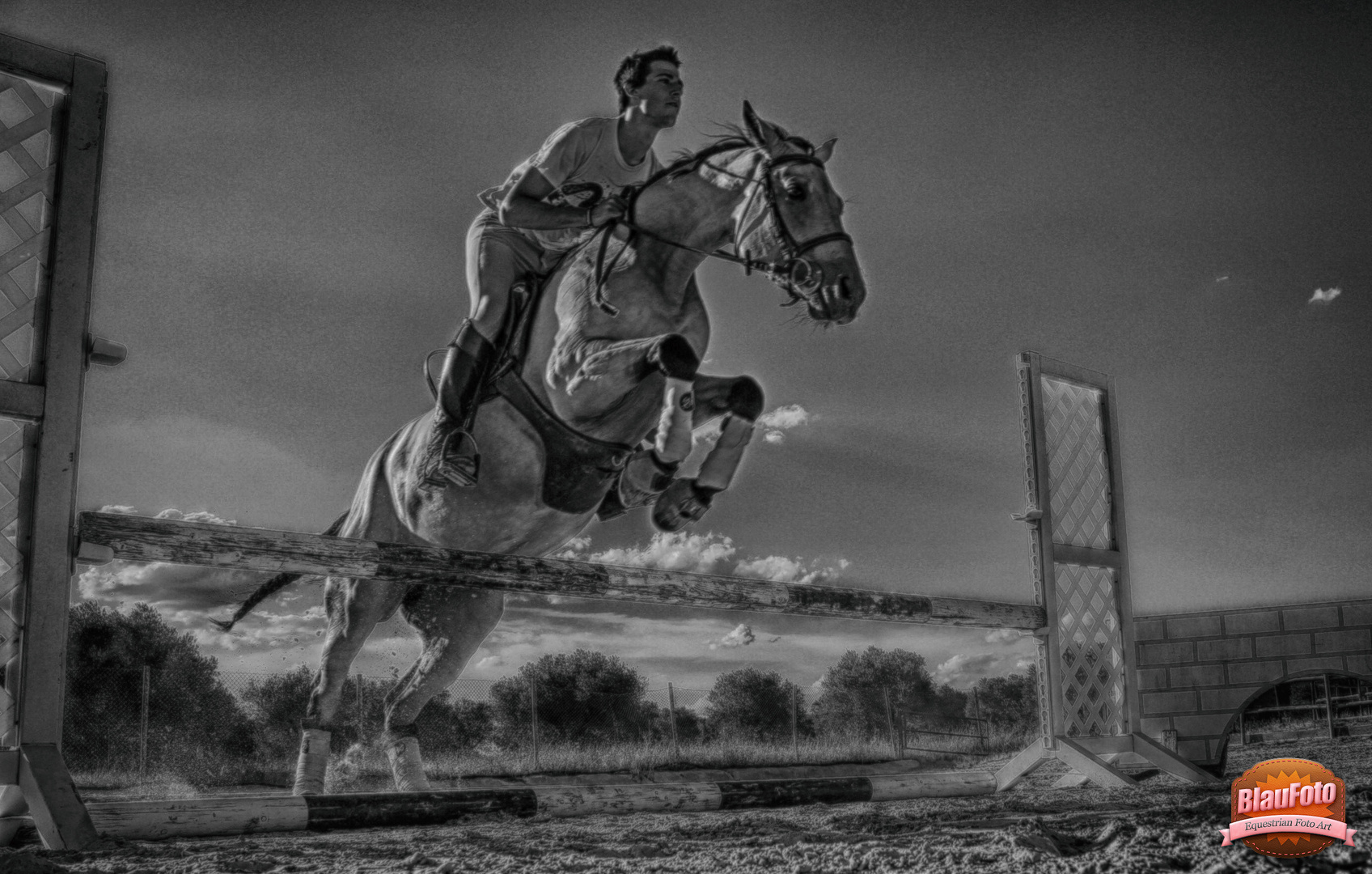 Mein Reining Pferd springt