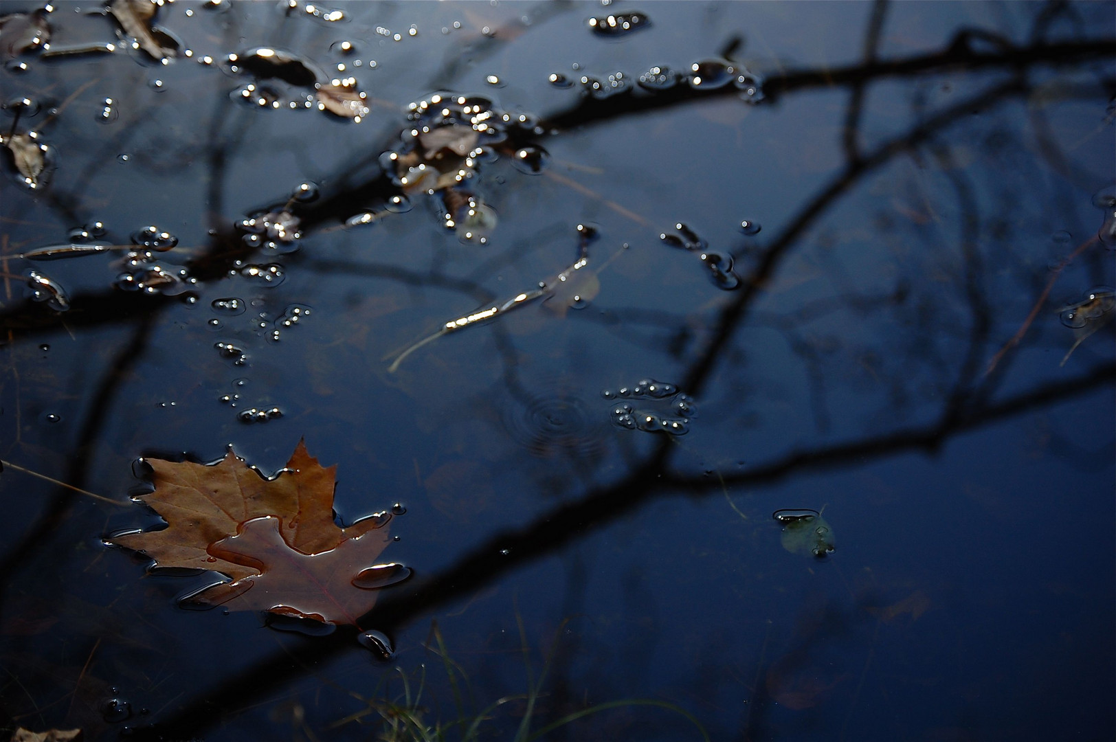 mein See im Herbst