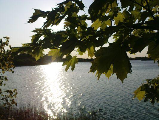 Mein See, meine Stille