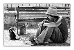 Mein Sohn und die Straßenkatzen