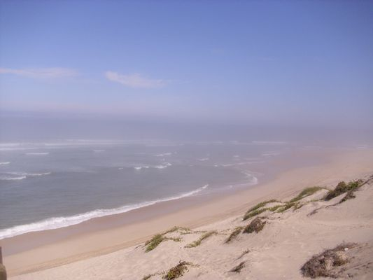 mein Strand 2011