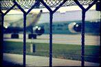 **Mein Tag am Zaun**