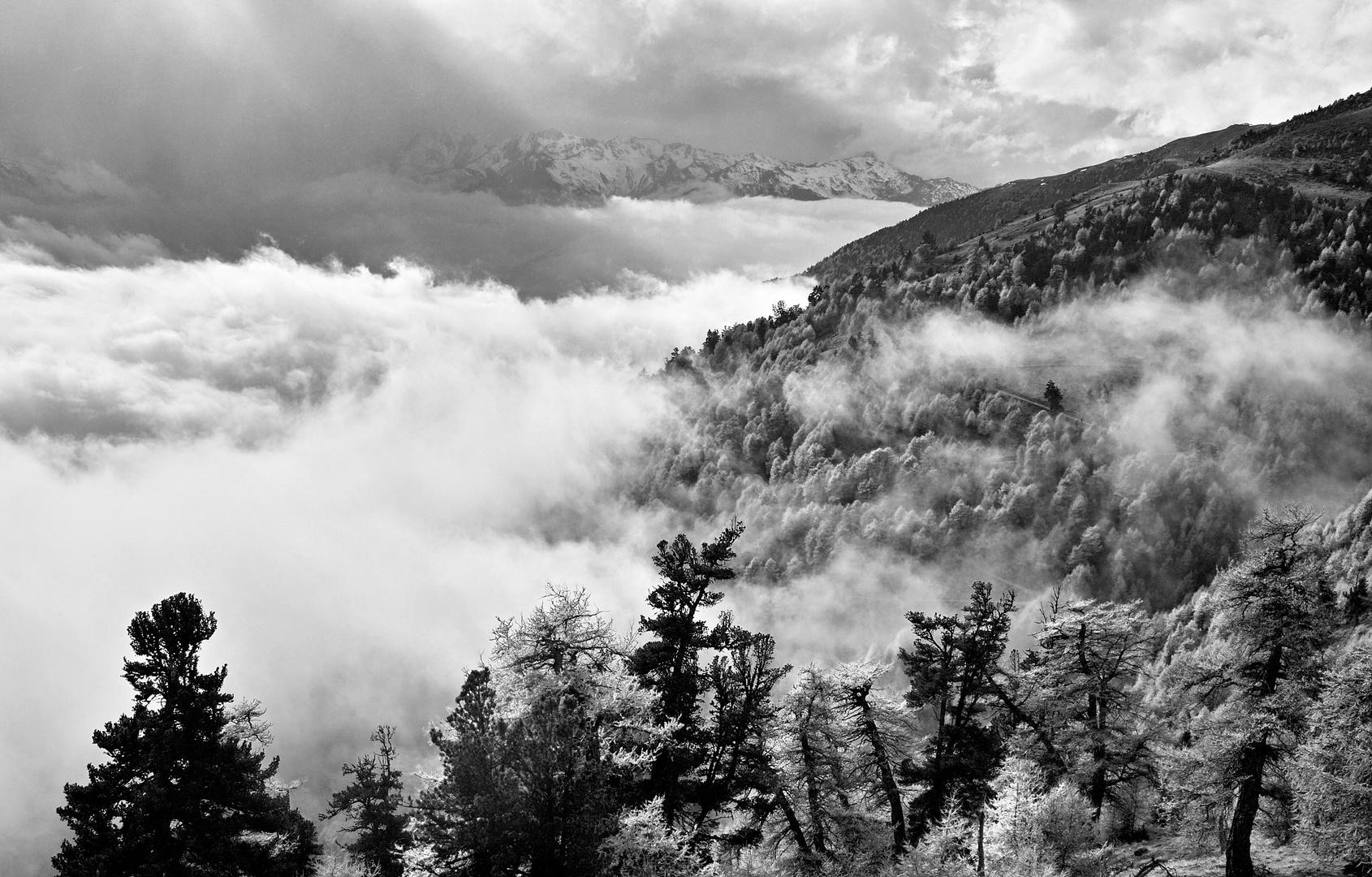 mein Vinschgau/Südtirol