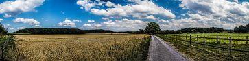 Mein Weg durch die Ried von TacitusRomeo