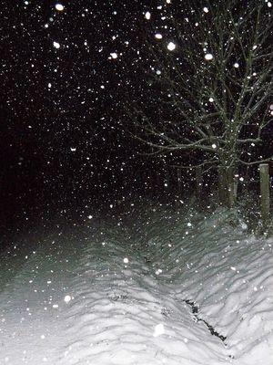 Mein Weg im Winter