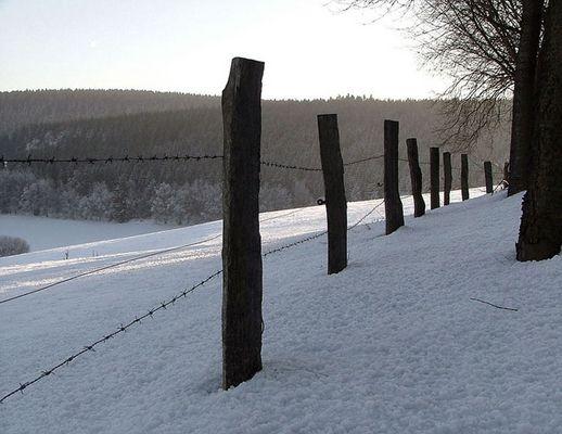 Mein Winter