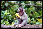 Meine Banane!