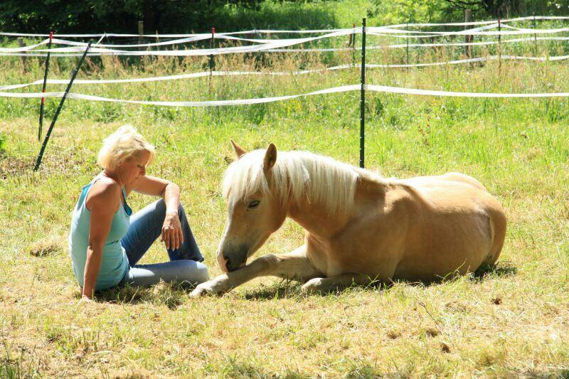 meine beiden Blondinen